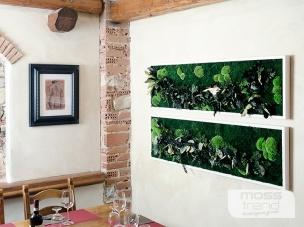 quadri-vegetali-15