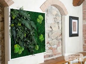 quadri-vegetali-18